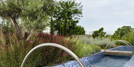 Dobbeltværelse med plunge pool på Hotel KB Ammos på Skiathos, Grækenland.