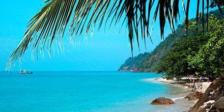 Strand på Koh Chang i Thailand.