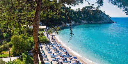 Lemonika-stranden ved Kokkari på Samos, Grækenland.