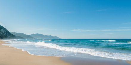Glyfada-stranden på Korfu, Grækenland.