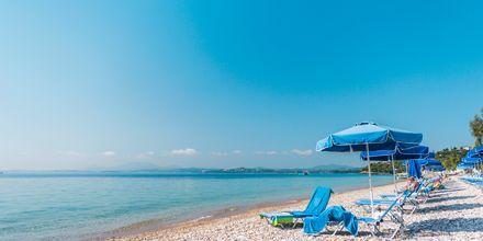 Barbati-stranden på Korfu, Grækenland.