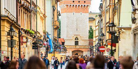 Den gamle by i Krakow.