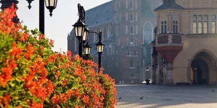 Krakow i Polen.