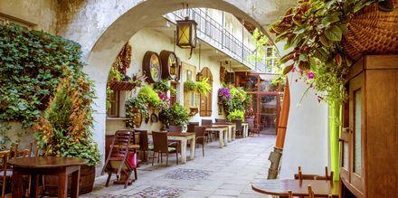 Café i Krakow, Polen.