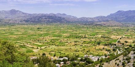 Frodige områder på Kreta.
