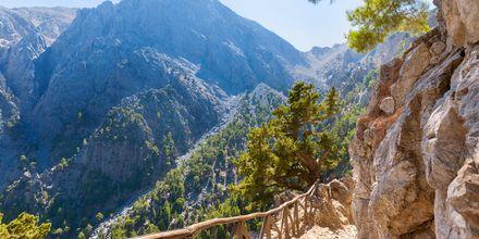 Samaria-kløften på Kreta.