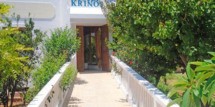 Indgang til Hotel Krinos i Lefkos på Karpathos, Grækenland