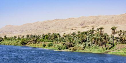 Nilen, Krydstogt på Nilen med MS Alyssa, Egypten