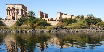 Udflugt til Philae-templet i Aswan, Krydstogt på Nilen med MS Alyssa, Egypten