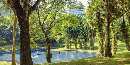 Central park i Kuala Lumpur, Malaysia.