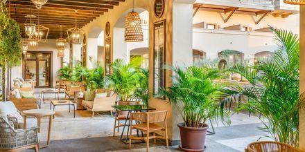 Golden bar på Hotel La Plantacion del Sur Vincci i Playa de las Americas, Tenerife.