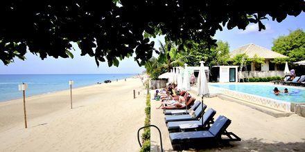 Strand og poolområde på Lamai Wanta Beach Resort på Koh Samui, Thailand.