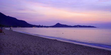 Strand ved Lamai Wanta Beach Resort på Koh Samui, Thailand.