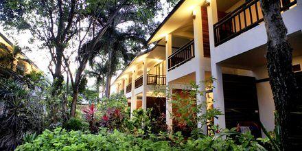 Lamai Wanta Beach Resort på Koh Samui, Thailand.