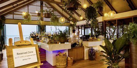 Z Club Bar på Let's Sea Hua Hin Al Fresco Resort i Thailand.