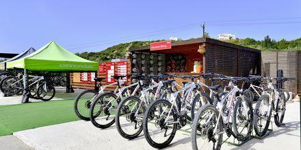 Cykeludlejning på Hotel Levante Beach Resort på Rhodos, Grækenland.