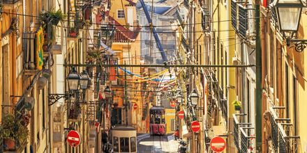 Sporvognen i Lissabon, Portugal.