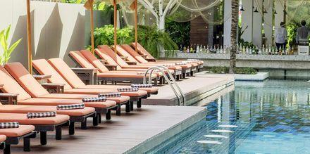 Pool på Hotel Loligo Resort Hua Hin Fresh Twist By Let's Sea i Thailand.