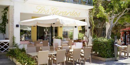 Restaurant på Hotel Los Geranios i Puerto de Sóller, Mallorca.
