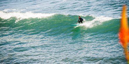 Surfing på Maderia