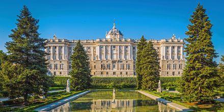 En af verdens smukkeste slotte - Palacio Real de Madrid.