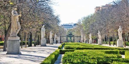 Paseo de las Estatuas i Retiro Park.