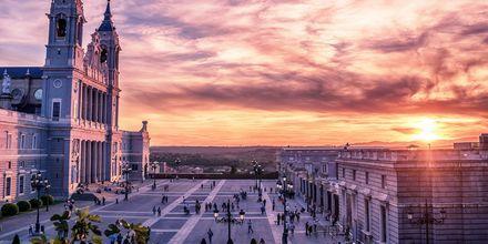 En af de smukkeste seværdigheder i Madrid er Cetedral de la Almudena.