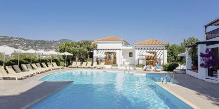 Pool på Hotel Maistros på Skopelos.