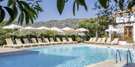 Hotel Maistros på Skopelos.