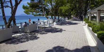 Havnepromenaden i Makarska på Makarska Riviera, Kroatien.