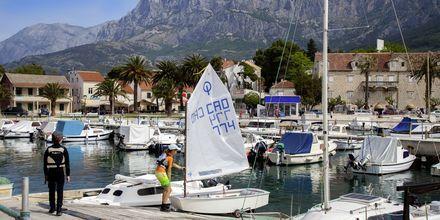 Havnen i Makarska på Makarska Riviera, Kroatien.