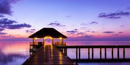 Smukke island resorts på Maldiverne