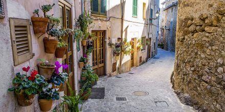 I Valldemossa er der snoede gader med blomster på væggene.