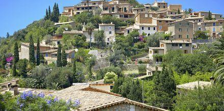 Den smukke by Deia på Mallorcas vestkyst. Kendt for at lokke kunstnere til fra hele verden.
