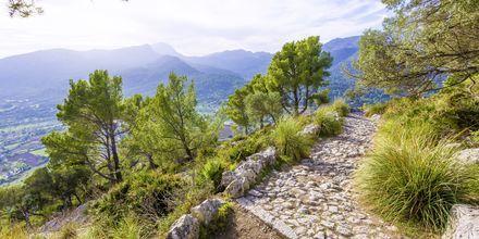 Vandring på Mallorca, Spanien.