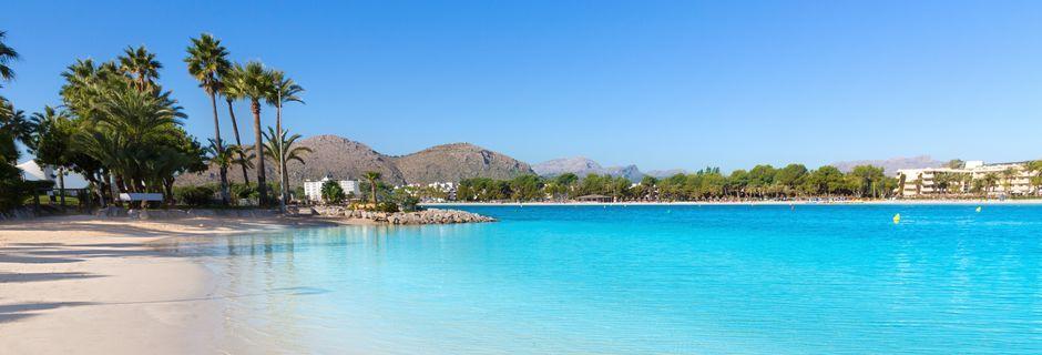 Stranden i Alcudia er næsten 15 km lang.