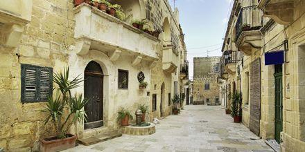 Gozo er en smuk by, som er populær blandt lokalbefolkningen og turister.