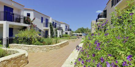 Margarita Beach Resort G D's Hotels på Kreta, Grækenland.
