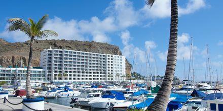 Marinaen ved Marina Suites i Puerto Rico, Gran Canaria.