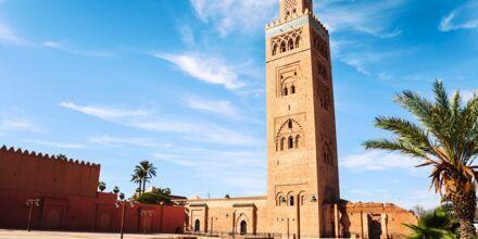 Moské i Marrakech, Marokko.