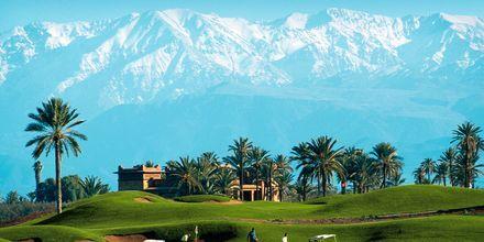 Golfbane i Marrakech, Marokko.