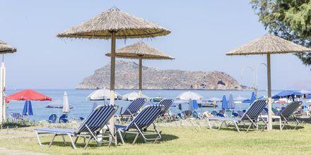 Stranden ved Hotel Mary i Platanias, Kreta.
