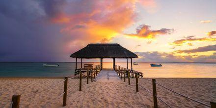 Solnedgang på den smukke strand Flic en flac, Mauritius.