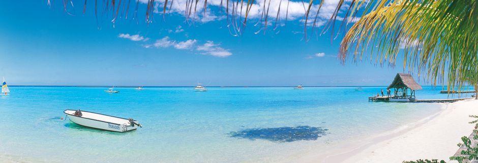 En af de smukke paradis-strande på Mauritius