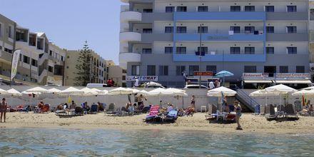 Hotel Medusa i Rethymnon på Kreta, Grækenland