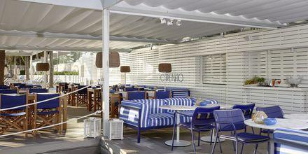Beachclub og restaurant på hotel Melia Antillas Calvia Beach, Mallorca