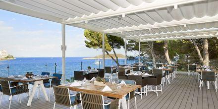 Restaurant Merkado på hotel Melia Antillas Calvia Beach, Mallorca