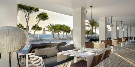 Buffetrestaurant på hotel Melia Antillas Calvia Beach, Mallorca