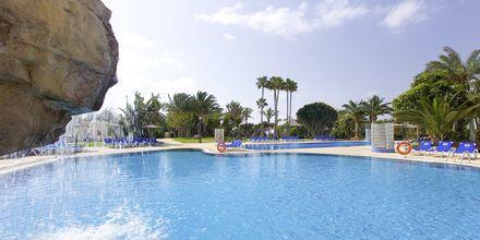 Pool på Hotel Melia Gorriones på Fuerteventura, De Kanariske Øer, Spanien