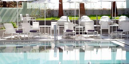 Pool på Hotel Melrose i Rethymnon, Kreta.